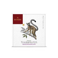 Tavoletta di cioccolato Domori Single Origin Trinitario 70% Madagascar da 25gr