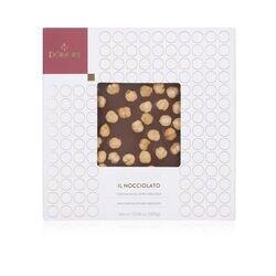 Cioccolato Domori Quantum nocciolato al latte da 300gr